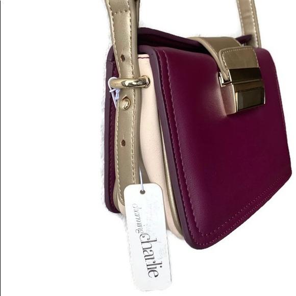 Charming Charlie Color Block Shoulder Bag
